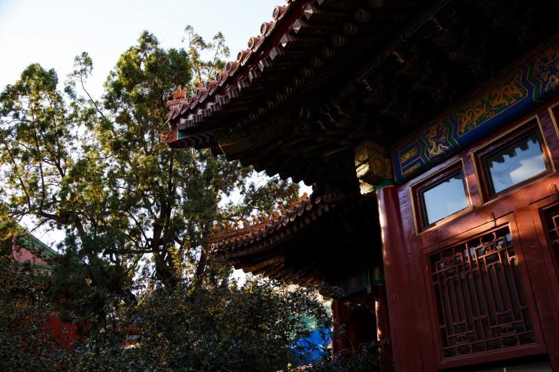 Beijing Jingshan park 28