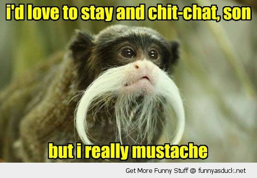 i'd love to stay and chit-chat, son but i really mustache