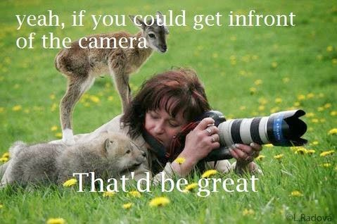 yeah, if you could get infront of the camera That'd be great