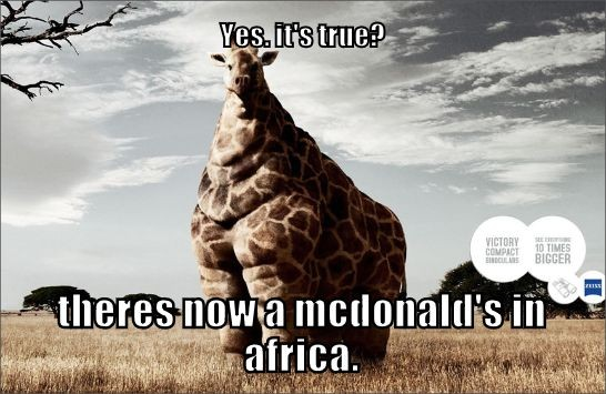Yes, it's true? Theres now a mcdonad's in africa.
