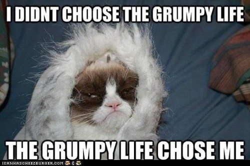 didnt, choose, grumpy, life, chose