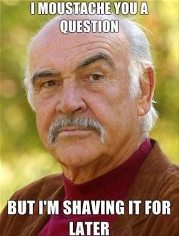 I moustache you a question. But I'm shaving it for later.