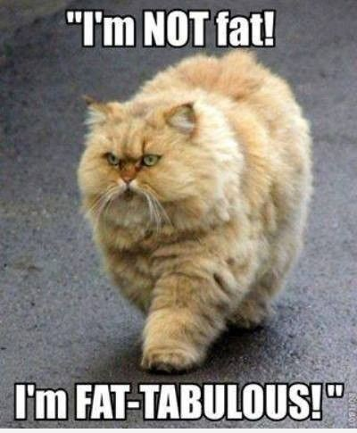 """I'm NOT fat! I'm FAT-TABULOUS!"""