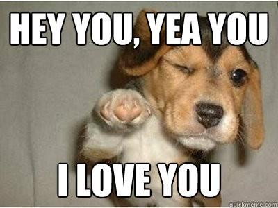 HEY YOU, YEA YOU...