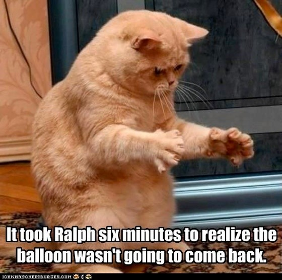 I took Ralph six minutes to realize the balloon wasn't going to come back.