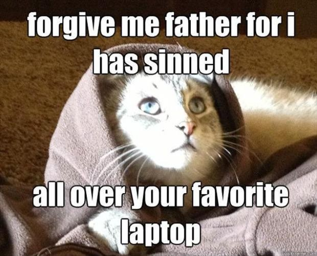 Forgive me father for I has sinned.All over your favorite laptop.