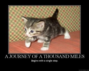 A journey of a thousand miles. Begins with a single step.