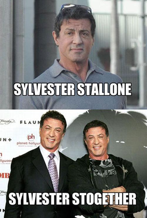 Sylvester Stallone vs Sylvester Stogether
