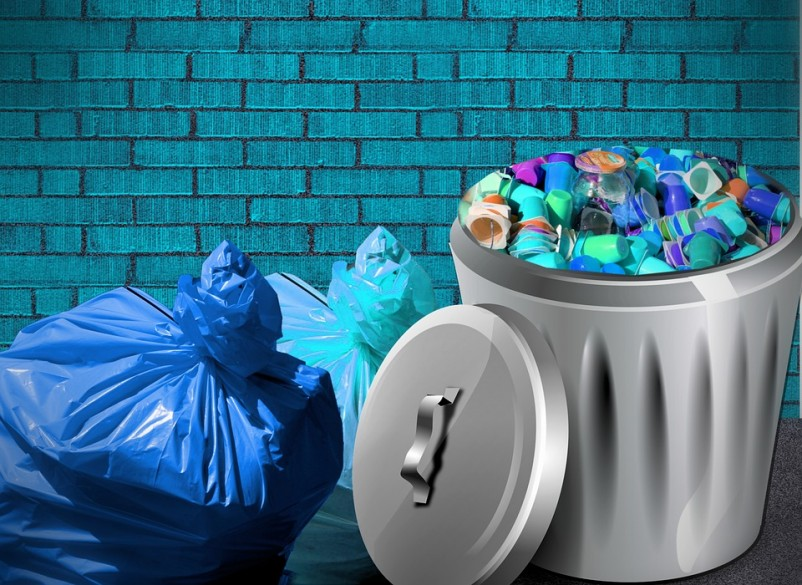 Enjoyment of trash films linked to high intelligence, study finds