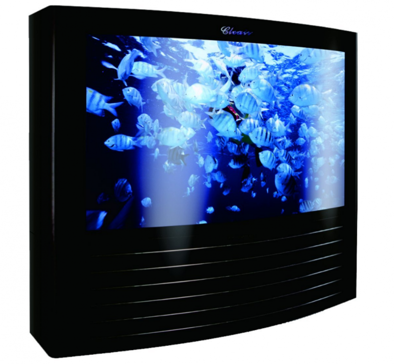 Best 5 Cheapest Huge Fish Tank You Can Buy Online on Sale