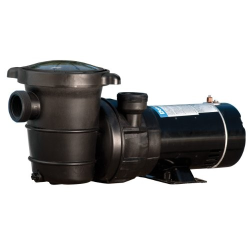 Video Review Doheny S Replacement Swimming Pool Pump For