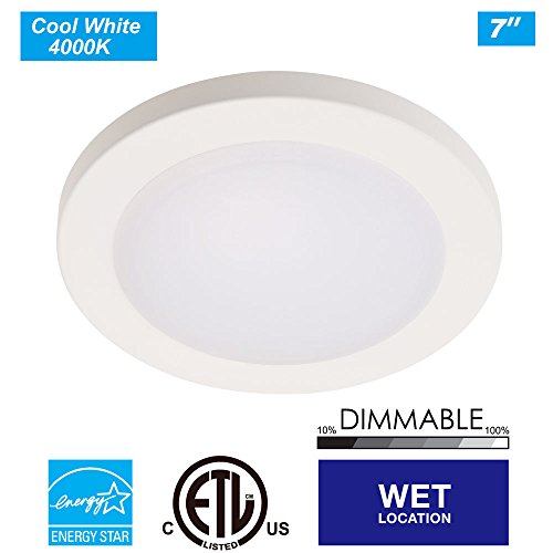 Where To Buy Ceiling Lights: Where To Buy The Best Ceiling Light Diffuser Nut? Review