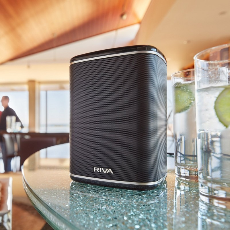 Riva ARENA Compact Multi-Room Wireless Speaker with Battery Pack