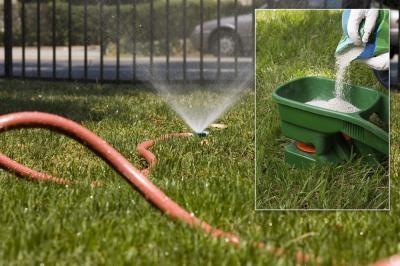 Lawn Irrigation & Fertilization Trends (IMAGE)