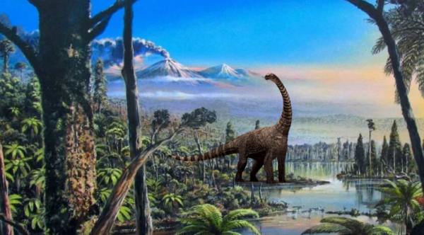 90 Million Year Old Rainforest