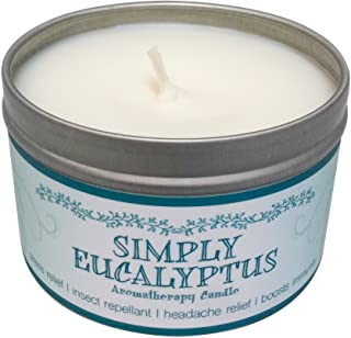 Our Own Candle Company Soy Wax Simply Eucalyptus