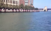 hippo in Chicago River