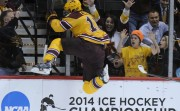 2014 NCAA Division I Men's Hockey