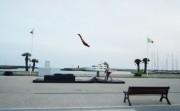 teeterboard flips