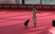 dancing with a dog