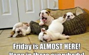 Friday is ALMOST HERE! Hang in there everyboday!