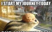 I START MY JOURNEY TODAY AND I WALNUT FAIL
