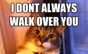 I DONT ALWAYS WALK OVER YOU....