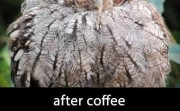 Before coffee... After Coffee